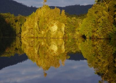 Gordon-River-Reflections.-by-John-Marsden--Smedley